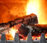 Дрова. Какими дровами топить котел на твердом топливе?